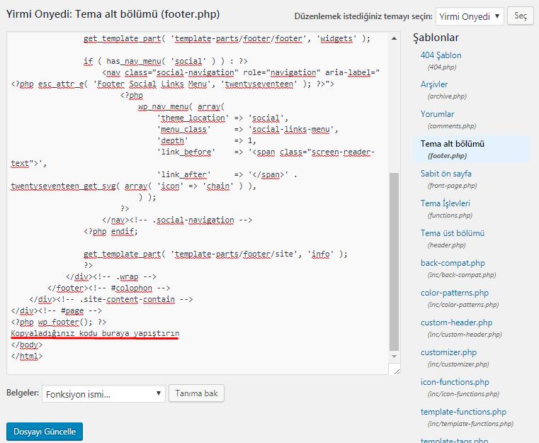 analytics kodu ekleme tema