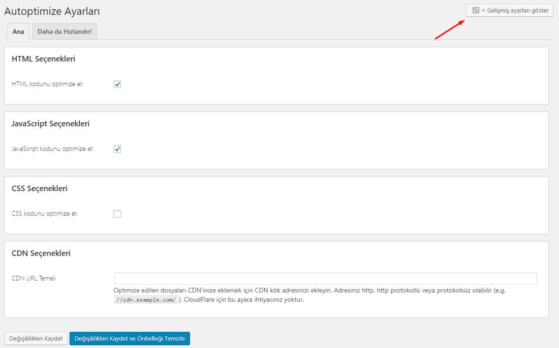 autoptimize gelişmiş ayarlar sayfası