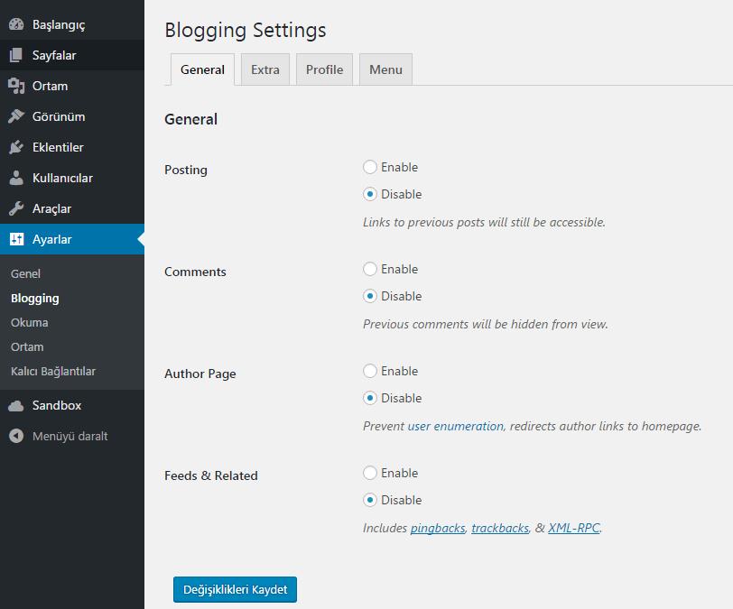 blogging ayarları