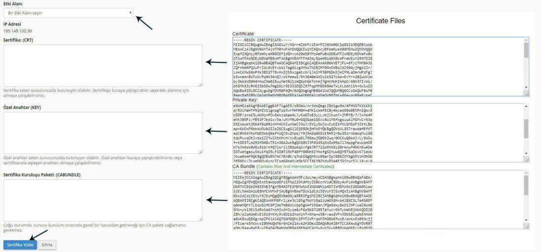 cPanel SSL yükleme nasıl yapılır