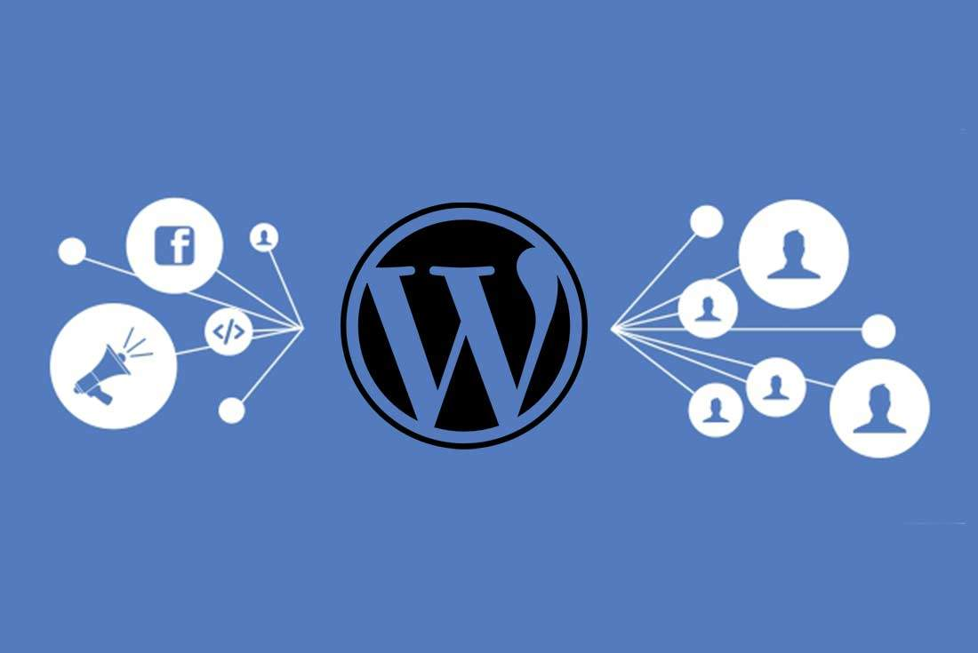 wordpress facebook piksel kurulumu