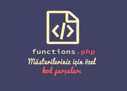 Wordpress function.php