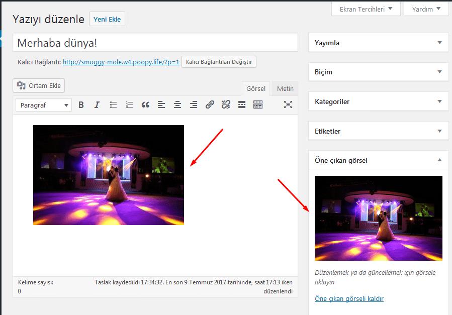 wordpress öne çıkarılan resim iki kere çıkıyor