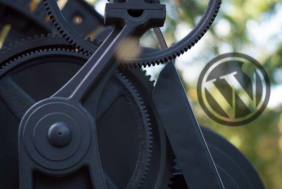 WordPress otomatik güncelleştirme ayarları