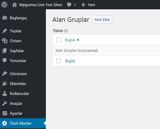 wordpress özel alan ekleme