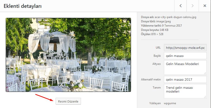 wordpress resim düzenleme ekranı