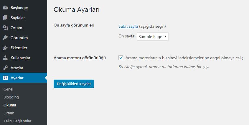 wordpress sabit sayfa ayarı