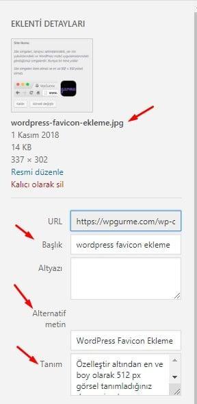 WordPress Görsel Alanları