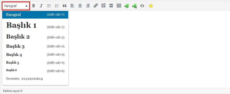 wordpress h1 h2 h3 etiketleri