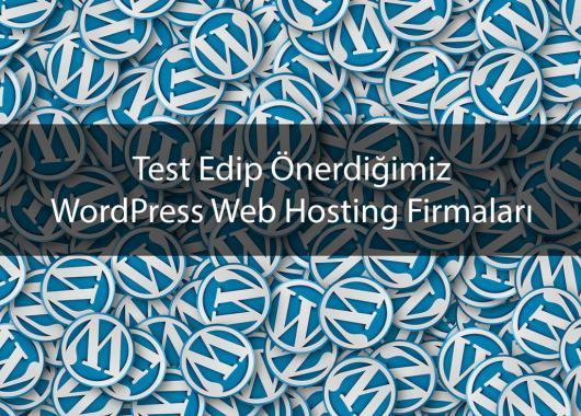 WordPress Web Hosting